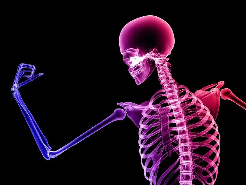 Tabung Massa Tulang untuk Kesehatan Masa Depan